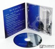 Тиражирование дисков,  печать на дисках,  цена Украина