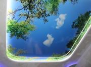 Натяжные потолки - окно в новый мир.